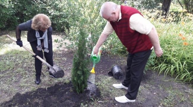 Rahmaninov'un bahçesine İdil Biret ağacı