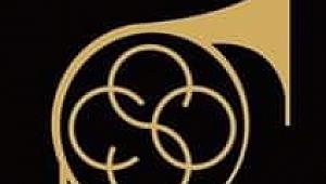 CSO Yönetimine ve Yorumculara Hatırlatmalar